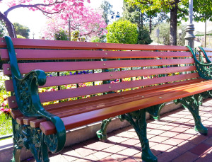 An empty park bench awaits