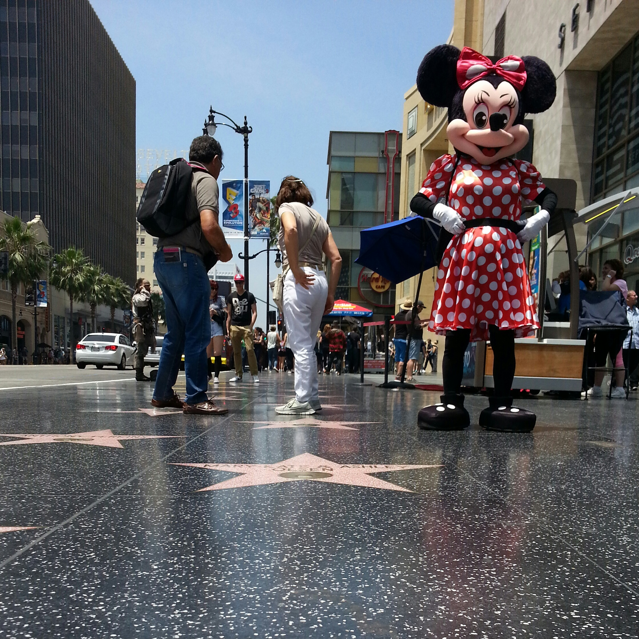the hollywood perception vs reality hollywood blvd